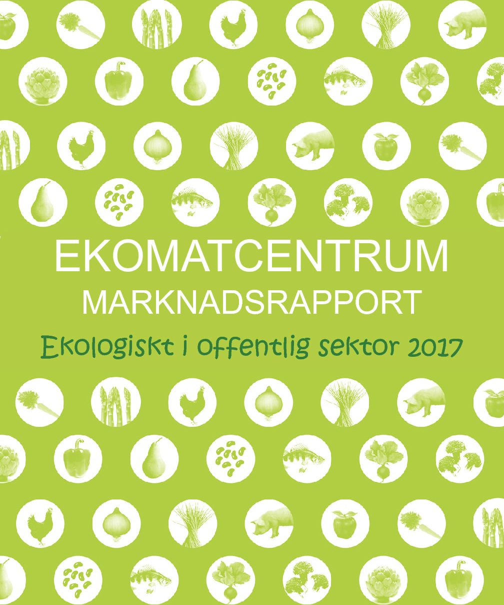 Rapport 2017 (2016)