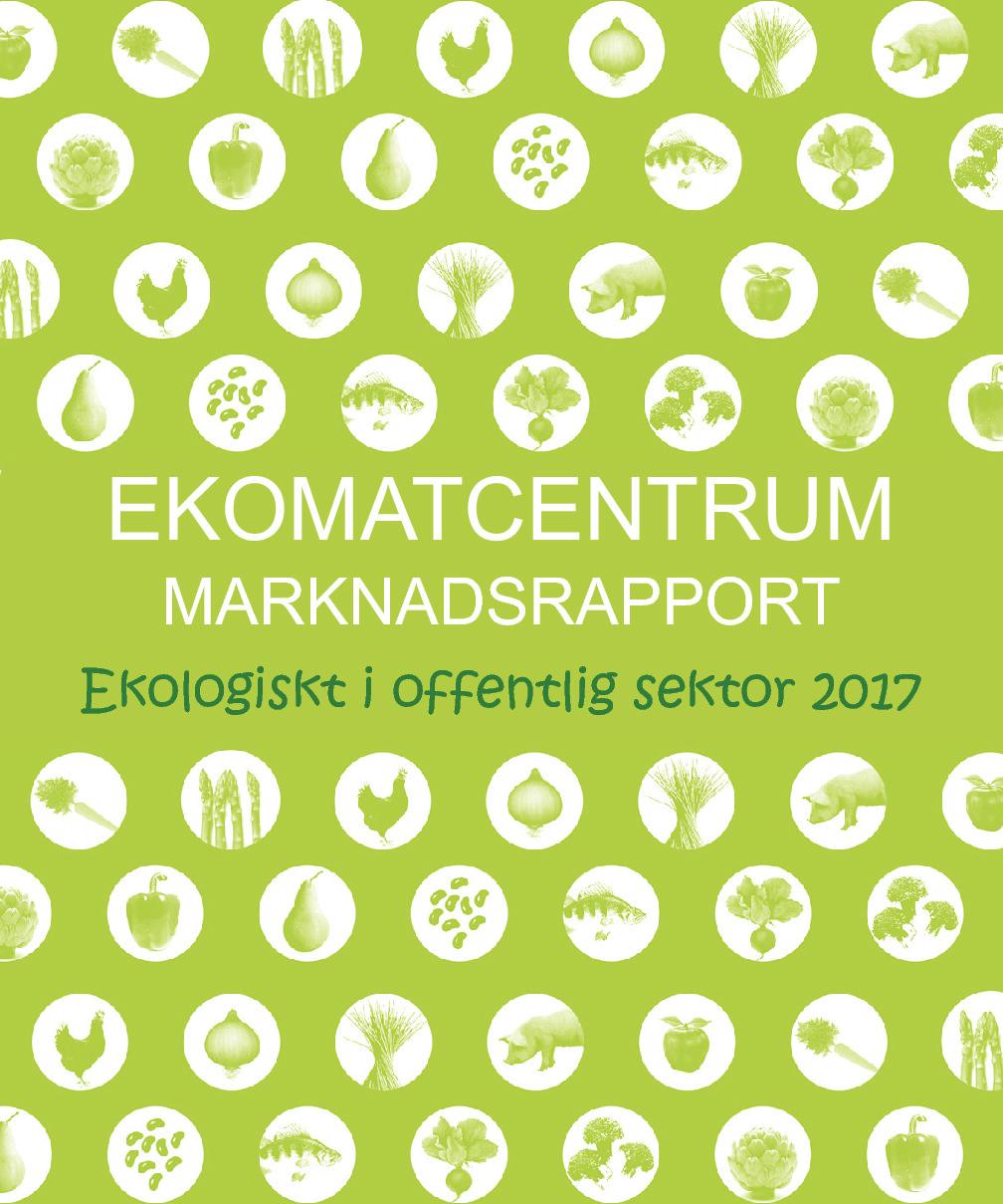 Rapport 2017 (2016)