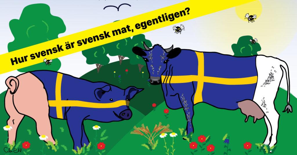 Bild med ko och gris med svenska flaggan på