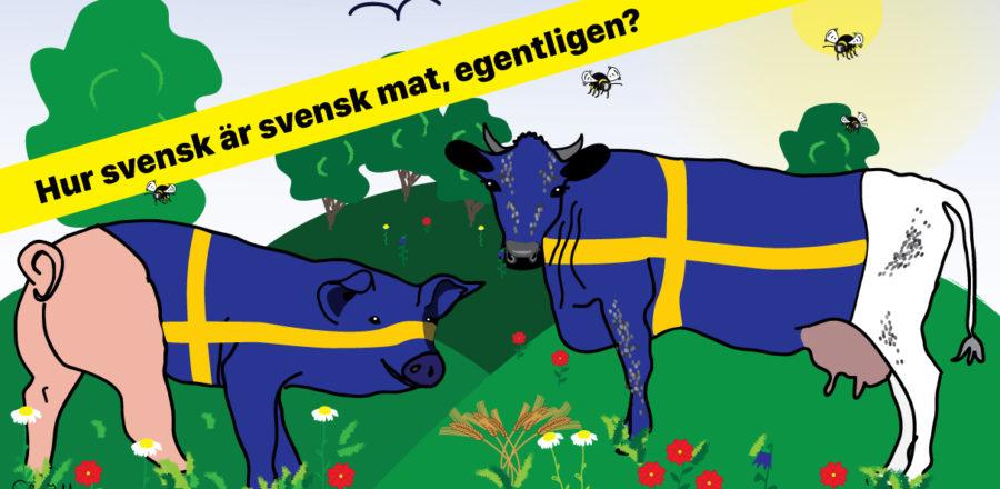 Hur svensk är svensk mat, egentligen? Se webinar.
